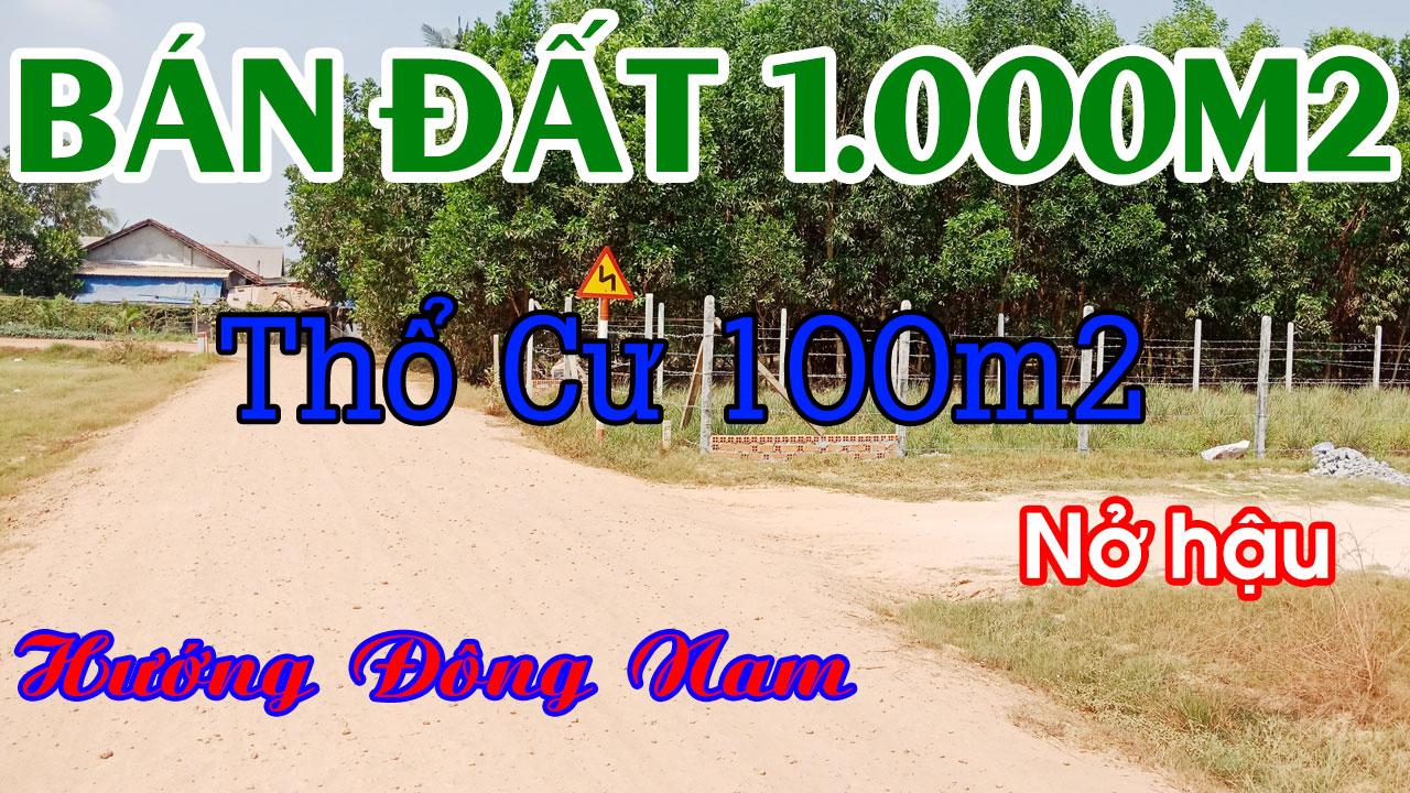 Bán Ngay 1.000m2 Đất Thổ Cư Được 100m2 Hướng Đông Nam Nhìn Thấy Núi Bà Rất Đẹp