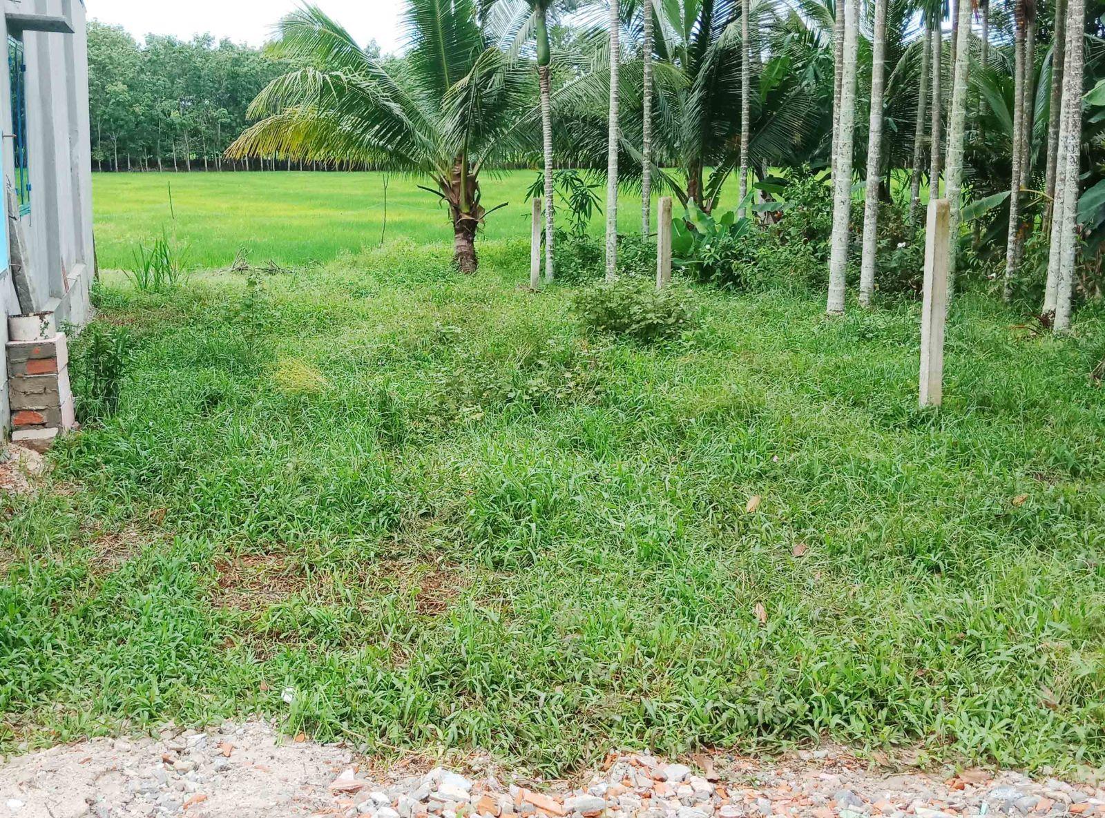 Đất Giá Rẻ TP Tây Ninh 390 Triệu Hết Đất